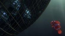 《海底总动员》片段:莫林指挥群鱼挣脱渔网救出多莉