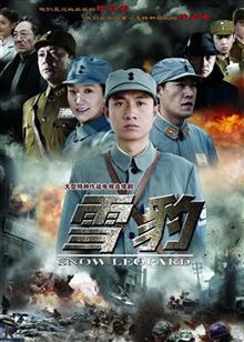 雪豹 电视剧