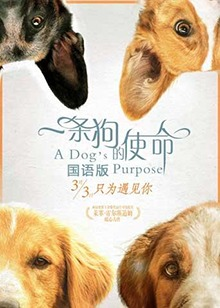 一条狗的使命 国语版