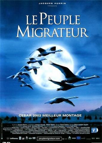 《迁徙的鸟》电影高清在线观看