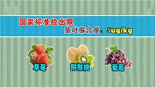 你懂得不够20151219期:真有激素水果吗