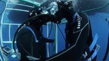 """美国男子在9米深海底求婚 环绕的大白鲨作""""见证"""""""