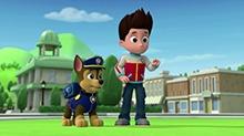 """斑点狗Marsha:再见了,我的新朋友""""小小毛绒"""""""