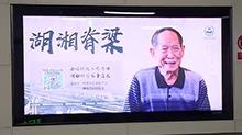 湖南科学家事迹展 扫码了解背后的故事
