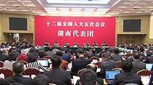 湖南代表团举行第七次全体会议