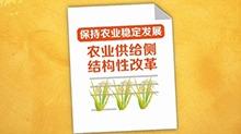 """报告解读:""""三农""""工作出实招"""