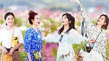 第4期:谢娜打卡张杰MV花海